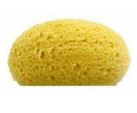 Wholesale Natural Sponge BATH BODY Beauty Cosmetic
