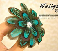 Wholesale Hollywood Star Feather feather hair Clips mixed order QFSB1023