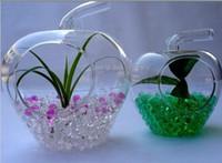 Wholesale Crystal Soil Water Beads Crystal Magic Mud