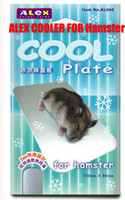 Wholesale Beautiful and Functional Cool Plate for Hamster Durable and Creative Hamster Cooler
