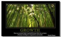 motivational posters - Motivational Inspirational Success Art Poster Silk canvas Poster wall poster quot GROWTH quot