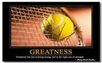 motivational posters - Motivational Inspirational Success Art Poster Silk canvas Poster wall poster x13 quot quot GREATNESS quot