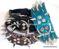 Wholesale to usa inch pit bull large dogs sharp spikes collar days to arrive