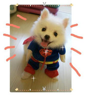 Wholesale free ship Superman Pet Dog clothes clothing apparel garment