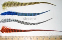 Wholesale natural feather hair extension quot quot quot mixed color green natural Peacock featherGSSWGD
