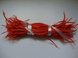 Wholesale hotselling fashion natural Feather Hair Extension feathers extensions match colors free