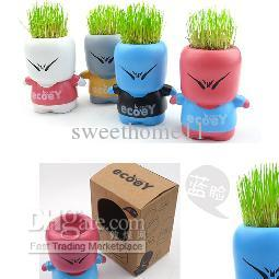2017 Diy Cultivation Plants Eco Desk Garden Decoration Ciboys