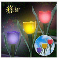 Wholesale Novelty Solar Powered Tulip flower light Garden landscape Light Solar lawn lamp Yard Stake Decor
