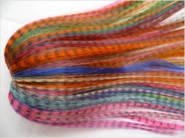 Wholesale Newest fashion mulit color Synthetic Grizzly Rooster Feather Hair Extension Feathers Extensions NF6