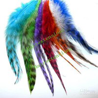 Wholesale Real Natural Feather Extension Kit Feathers Extensions Feathers Beads Needle Pliers