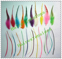 Wholesale Professional Kit of Feather Extensions Feathers Beads A Plier A Needle Mix Color