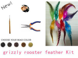 Wholesale grizzly rooster feather Extension Kit Natural Feathers Extensions Feathers Beads Plier