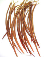 Wholesale 100pcs Brown Color Mixed Stiff BEAUTIFUL Feather Hair Extension quot