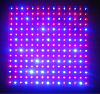 Wholesale Best price Red Blue LED Plant Grow Light Panel Hydroponic Lamp with Four Plugs HOT