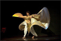 New Belly Dance Costume Isis Wings Belly Dance Performance W...