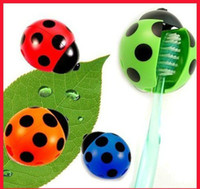 Wholesale Toothbrush Holder Ladybug Toothbrush Holder rack Automatic Ladybird bees Shaped toothbrush holder