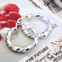 Wholesale lowest price Christmas gift Sterling Silver Fashion Earrings E103