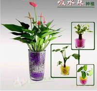 Wholesale Crystal Magic Mud Soil Water Beads Flower plant in sicere