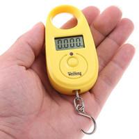 Digital Kitchen Scales  retail 15kgx5g,15kg 5g,15kg-5g Mini Digital Hanging Luggage Fishing Weighing