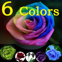 Wholesale 6 COLORS ROSE SEEDS RAINBOW BLUE BLACK GREEN PURPLE DEEP RED Flower Seed Garden Plants