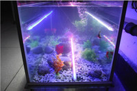 al por mayor piranha impermeable-Venta al por mayor impermeable LED lámpara de acuario IP68 Piranhas buceo luz LED 40cm 7 colores elegir 5pcs