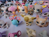 hasbro - Hasbro toy Hasbro Littlest Pet Shop Hasbro toy Hasbro figures Hasbro pet toy