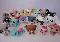 hasbro - Brand new Hasbro Toys Dolls baby doll Hasbro Littlest Pet Shop style mix order
