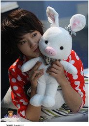 online shopping New cm Cleanrance High quality Girl Pig Rabbit Doll SBS Drama quot u r so beautiful children kid gift toy