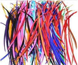 Wholesale Fashion Natural Goose Feathers Hair Extension High Quality Hair Extensions Vivid color