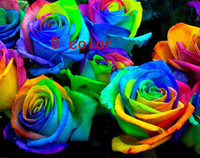 Wholesale 9 COLORS ROSE SEEDS Rainbow purple Red Black Red White Yellow Green Blue Rose plant seeds