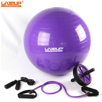 Wholesale liveup indoor Package Bodybuilding Fitness mix yoga ball Jumping rope pulling belt abdominal wheel