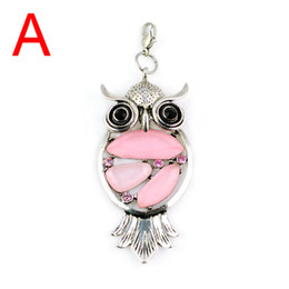 2013 hot selling Fashion Jewellery scarves Charm Resin Owl Pendants with 6colors ,PT-390
