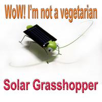 Wholesale 10pcs Solar Power toy Green Grasshopper gift for children kid