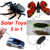 big cockroaches - Solar Car Cockroach butterfly Grasshopper Spider in Solar and Salt Water Hybrid Car