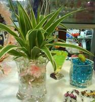 Wholesale Magic Crystal Soil Plant Soil Mud Water Pearl Beads packs per