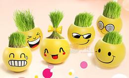 Wholesale Gift face expression Hair man Plant Bonsai Grass Doll Office Mini Plant Fantastic Home Decor pot see