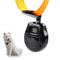 Cheap Mini DV 480 pet Best HDD / Flash Memory Less than 2'' pet camera