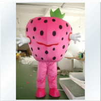 Unisex Costum Made Plant Fruit Costume   cartoon   cartoon walking Doll clothing   stage show dress   Strawberry mascot