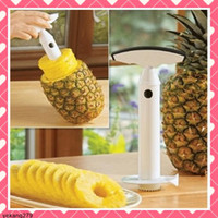 Wholesale 5pcs Pineapple Peelers Fruit Pineapple Corer Slicer Cutter Peeling Kitchen Tools