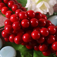 Wholesale 3mm mm mm mm mm Strand inch natural Red Sea Coral Gemstone Round Ball Loose Beads Findings