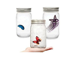 Wholesale Top Gifts Jar Butterfly Bottle Animated Electronic Butterfly Senor Monarch Swallowtail Butterfly