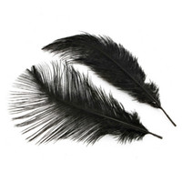 Wholesale Ostrich Feathers Home Decor Black inch set