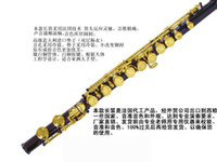 Wholesale Professional joint HSL C the flute hole purple body and gold key