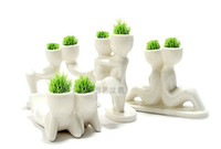 Wholesale Office Mini DIY Exotic Plants X lover Plant Bonsai Grass Doll Fantastic Home Decoration