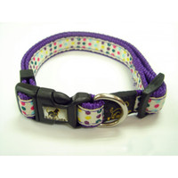Fashionable Pet Collar Traction Rope