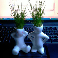 Wholesale DIY Cultivation Plants Eco Desk Garden Decoration Plant Magic Grass Planting Grass