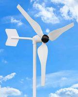 Wholesale 50w wind generator wind turbine high quality low price CE ROHS certificate