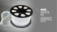 Wholesale high voltage v pure White led strip Waterproof flexible SMD led strip leds M
