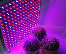 Скидка синяя панель 8шт G58 15W 225 LED Grow Light группы Стимулировать лампы гидропоники завода лампы Синий Красный 220