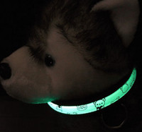 Wholesale Led collars LED pet collar pet outdoor Pet products